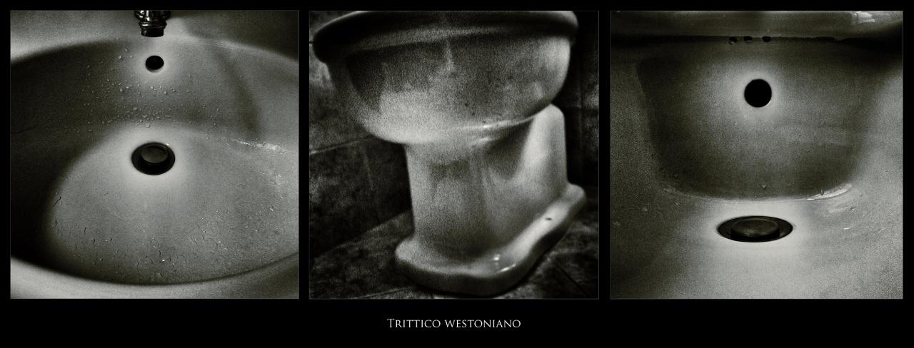 copyright Sandro Lombardo - www.sandrolombardo.com