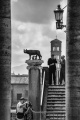 Rome Alcuni autori e critici oggi preferiscono parlare di buona fotografia piuttosto che di bella fotografia. Considerando buona una fotografia quando esplicita qualcosa di noi, amplifica i nostri pensieri, ci fa riflettere, ci trasporta dentro un immaginario e racconta una storia. Tutto vero! Ma la bellezza in senso artistico, per me, deve comunque esserci, anche in un opera fotografica. Nel valutare la bellezza di un'opera d'arte, secondo Robert Adams: la forma è bella perché aiuta l'uomo a superare uno dei suoi timori principali, ovvero che la vita e il mondo siano solo caos e che la sofferenza non abbia senso. Nelle arti visive la forma si concretizza in quel concetto che prende il nome di composizione. Lo scopo: più l'opera è bella più tende ad essere comprensiva. La novità e la varietà di elementi che riesce ad armonizzare. La fotografia quale forma espressiva dell'uomo, non è evoluzione della pittura, non è clonazione della realtà, non è riproduzione dell'esistente. E' probabilmente fotografia. Tutto dipende dall'intensità con cui l'osservatore sa vedere una fotografia e dall'intensità con cui il fotografo riesce ad esprimersi, a prescindere dalle tecniche utilizzate: allora l'opera – d'arte - continuerà a svolgere la sua funzione che potrebbe essere quella di migliorare un po' il mondo.