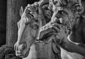 Trevi II Nikon D90 – modalità di diaframmi – ISO 200 f6.3 1/2000 –sottoesposta di 2 stop. Il teleobiettivo (200 mm) permette di isolare dettagli e la conversione in bianco e nero di apprezzare meglio le linee e le forme. La luce pomeridiana dell'inverno 2013 disegnava meravigliosamente le curve del barocco romano del gruppo marmoreo della fontana.  Ero interessato dalla materia e dalle forme, dalla ricchezza inesauribile della pietra/marmo che si adatta alla volontà dell'uomo/scultore/architetto. E a questo contrasto e in questo rapporto dialettico tra due modi di essere dell'arte e delle forme espressive dell'uomo.