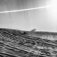 Sequence XIX - Desert