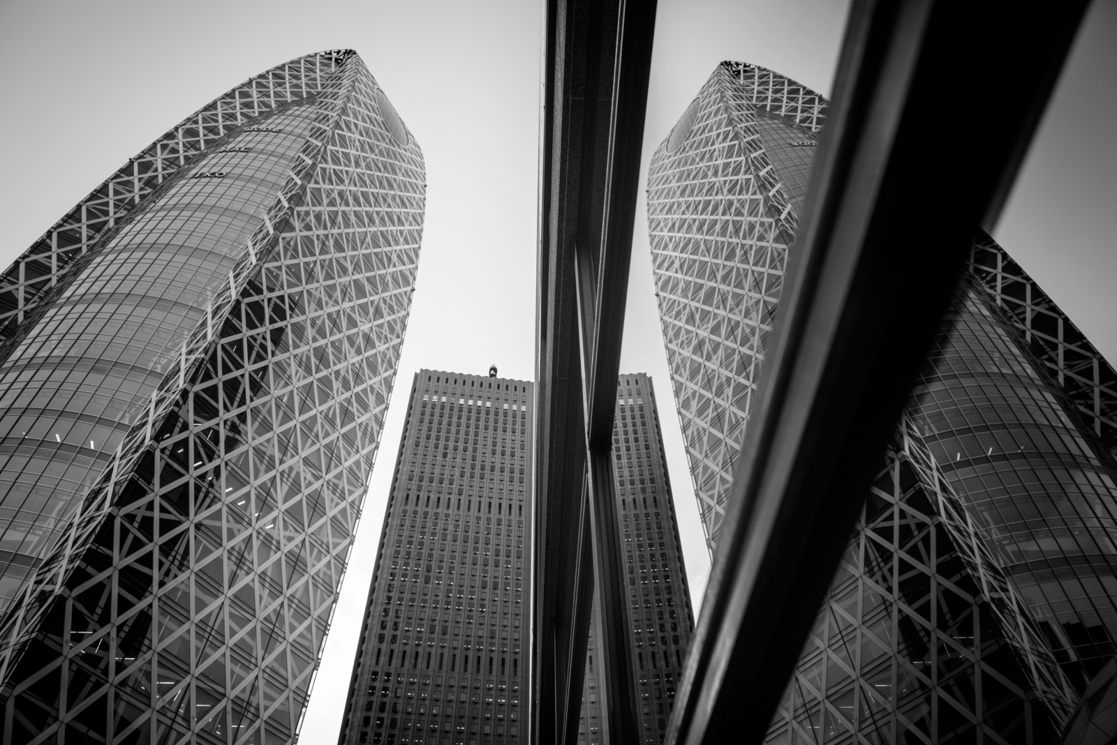 Tokyo 東京  Donato Palumbo©, all rights reserved