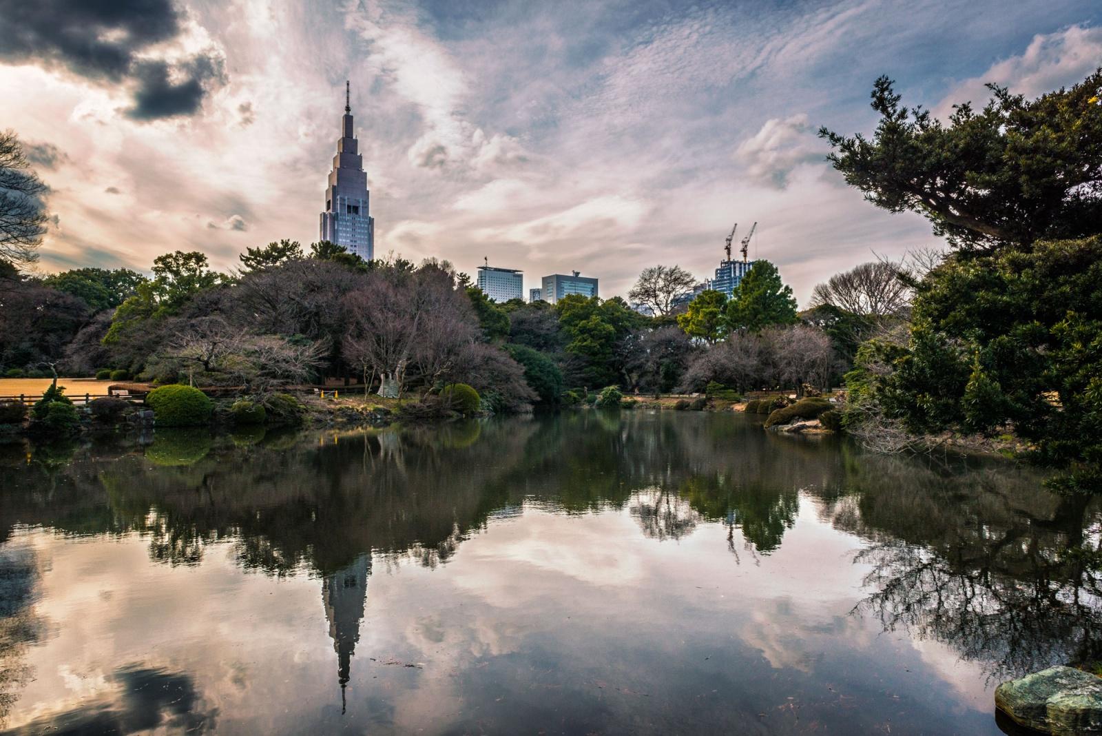 """Japan, Tokyo """"Parco Nazionale di Shinjuku Gyoen""""  ©Donato Palumbo"""